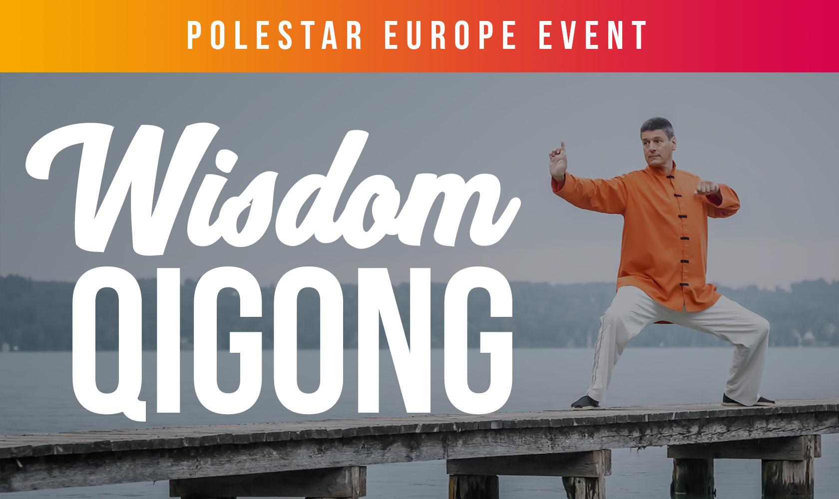 Wisdom Qigong (Polestar Europe Conference)