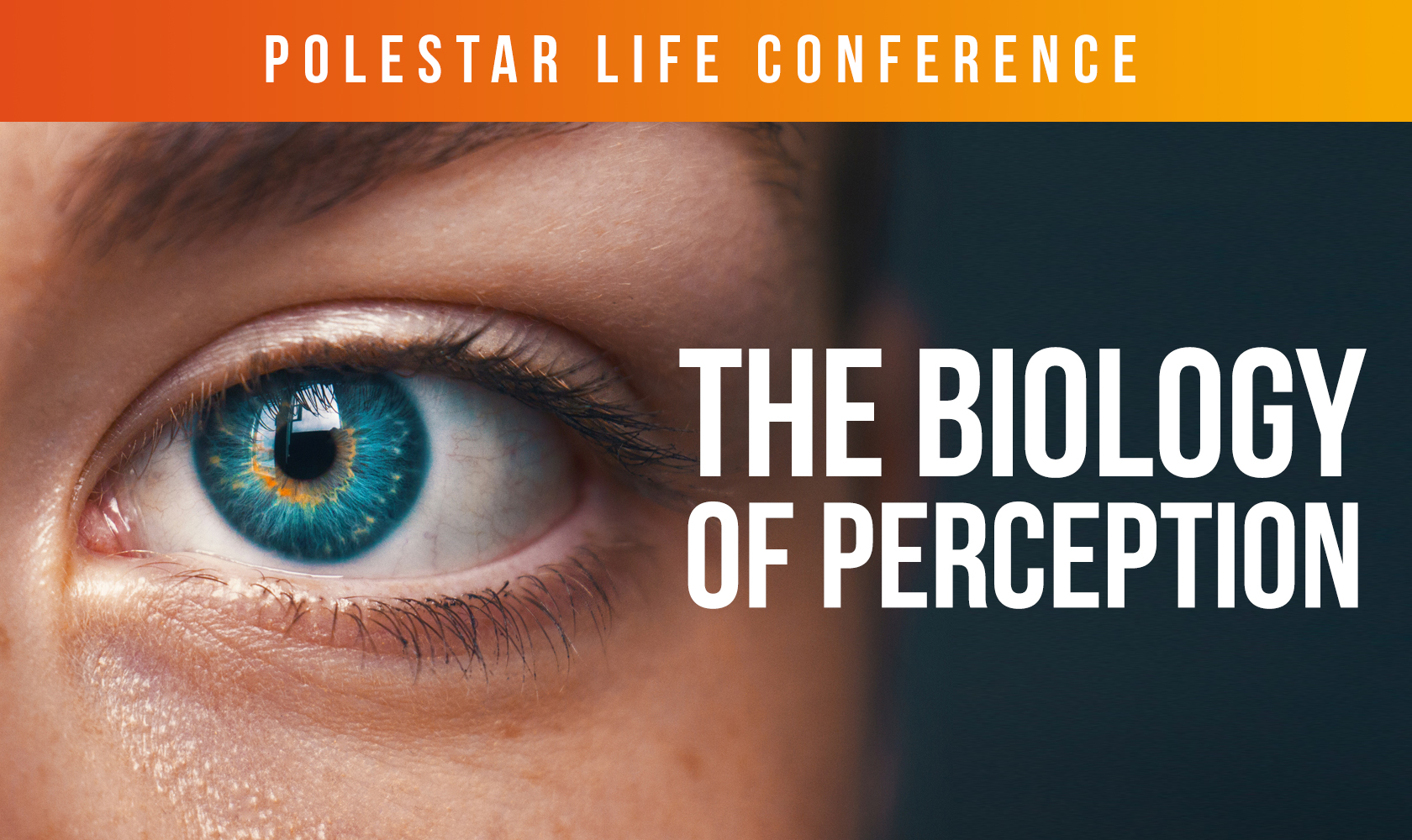 The Biology of Perception (Polestar Life Conference Series)