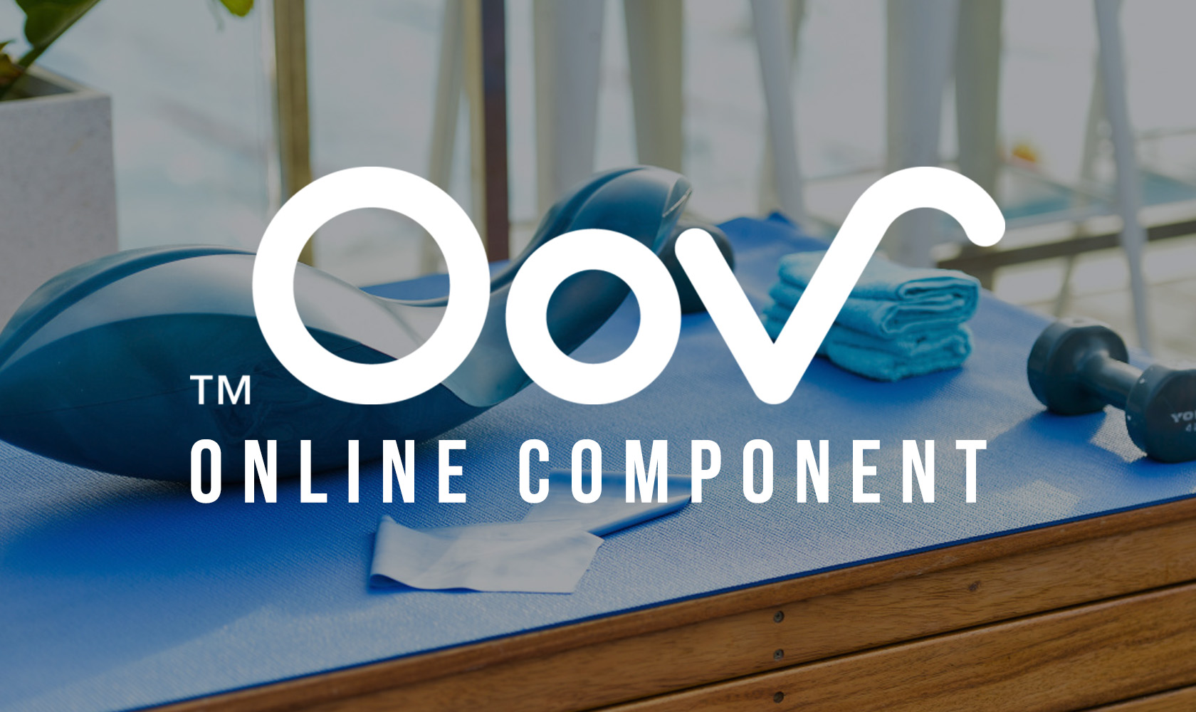OOV Online Component